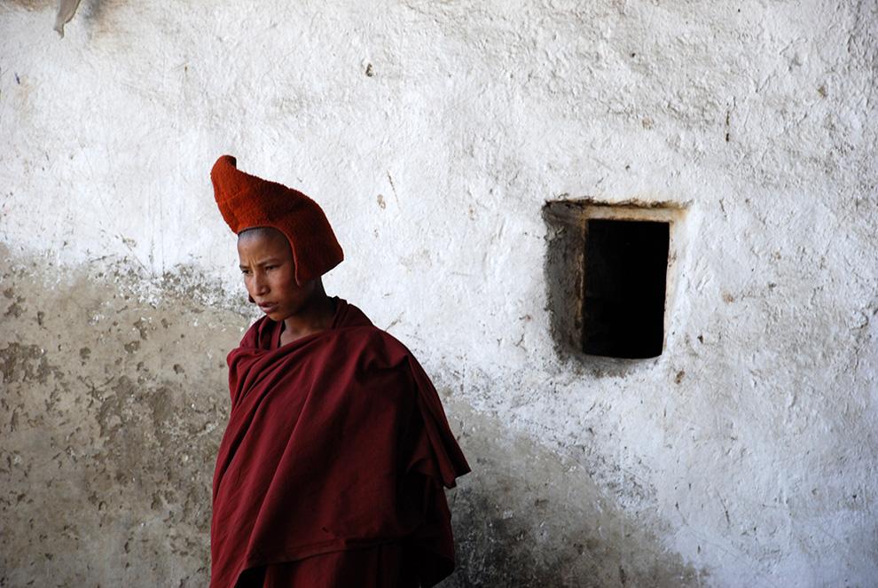 Himalájakék - Tibetvörös